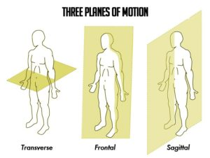 Planes-of-Motion